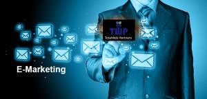 SMS TWP Emarketing